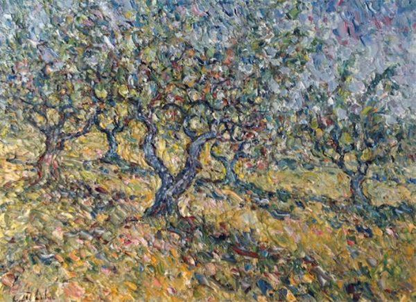 Les Oliviers du Domaine Souviou Provence