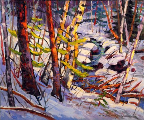 20x24 Jeunes pins au bord du ruisseau 72d800p(722)
