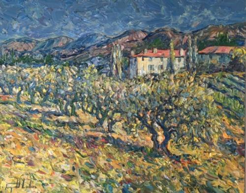 Vue de la Bastide Domaine Souviou/ Provence