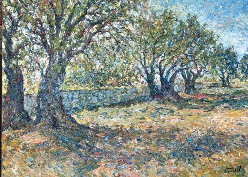 Les Oliviers de Souviou domaine souviou Provence