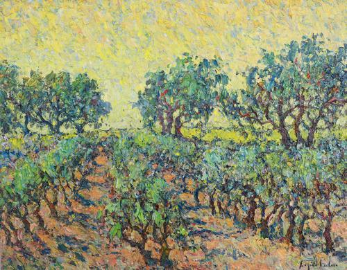 Oliviers et Vignes Provence